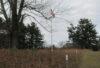 Bird Park examines Civil War connections